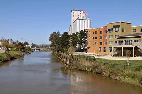 Petalum SEO Company along river